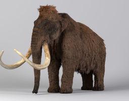 3D model Mammoth Maya
