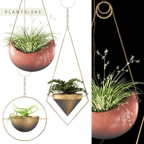 hanging plants 143 3d model max fbx unitypackage prefab 1