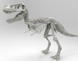 Tyrannosaurus Rex Skeleton 3D print model
