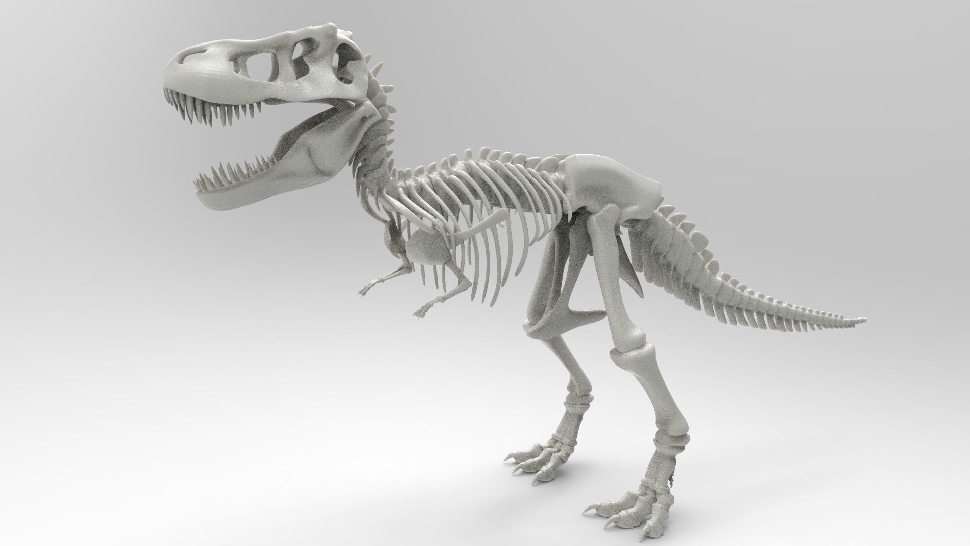 graphic regarding Tyrannosaurus Rex Printable named Tyrannosaurus Rex Skeleton 3D Print Style