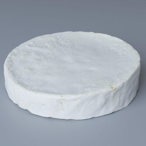 brie cheese 3d model max obj 1