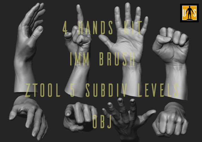 hand in 4 poses  3d model low-poly obj mtl ztl 1