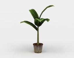 low-poly banana plant 3d model