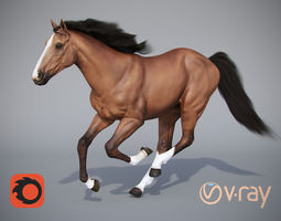 brown 3D model realtime horse