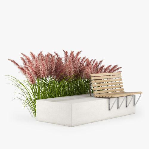 pink pampas grass seeds 3d model max obj mtl fbx 1