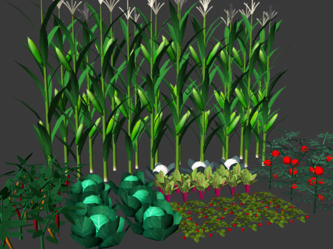 Buy And Sell Apps >> 3D model crops Vegetables | CGTrader