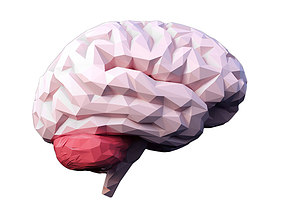 Low Poly Brain 3D model