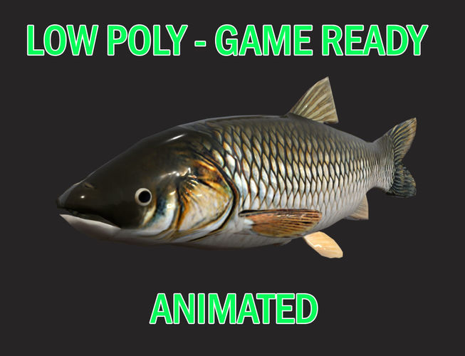 low poly amur fish animated - game ready 3d model low-poly obj mtl fbx 1