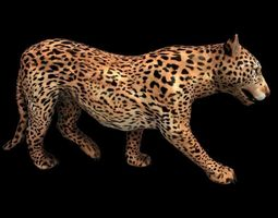 Big Cat and Animated low poly 3D asset