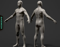 Average Male Body Basemesh 3D model