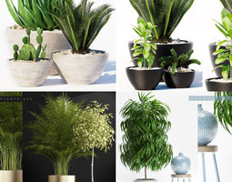 PLANTS COLLECTION 1 3D