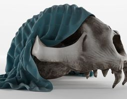Skull bone model decore