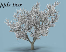 Apple tree 3D asset