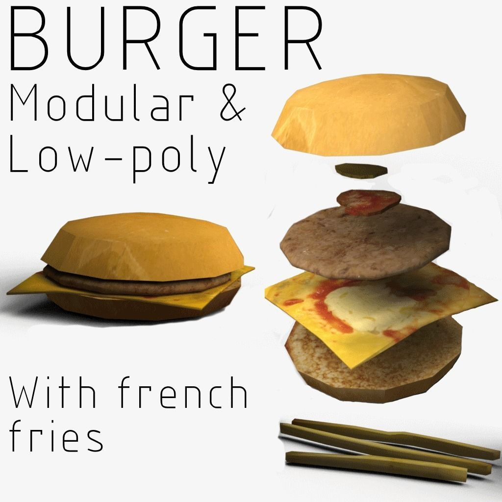 Modular Burger with French fries