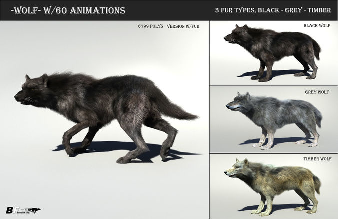 Remove Dog Hair From Car >> Wolf with hair and fur modifier 3D model   CGTrader