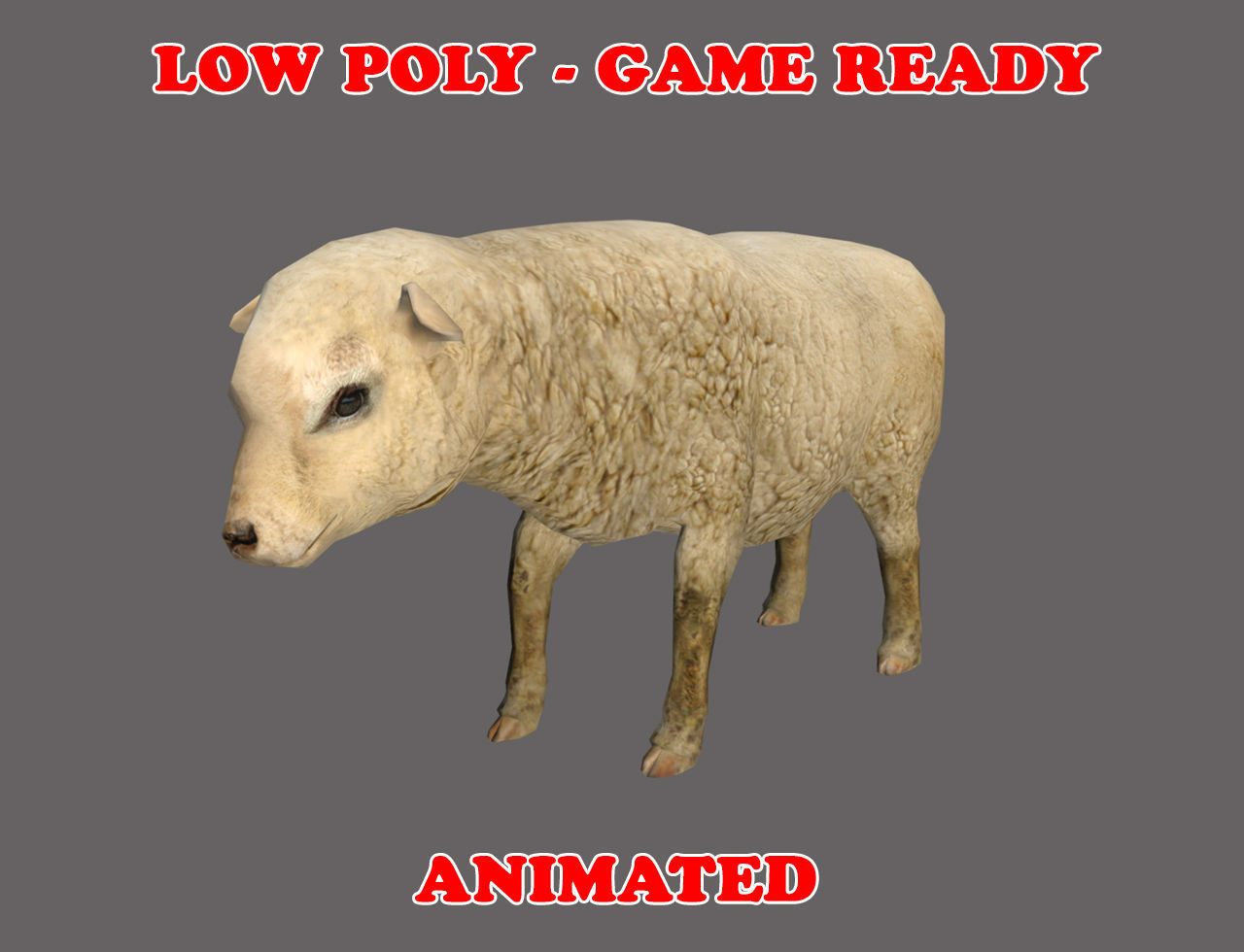 Low poly Sheep Animated - Game Ready