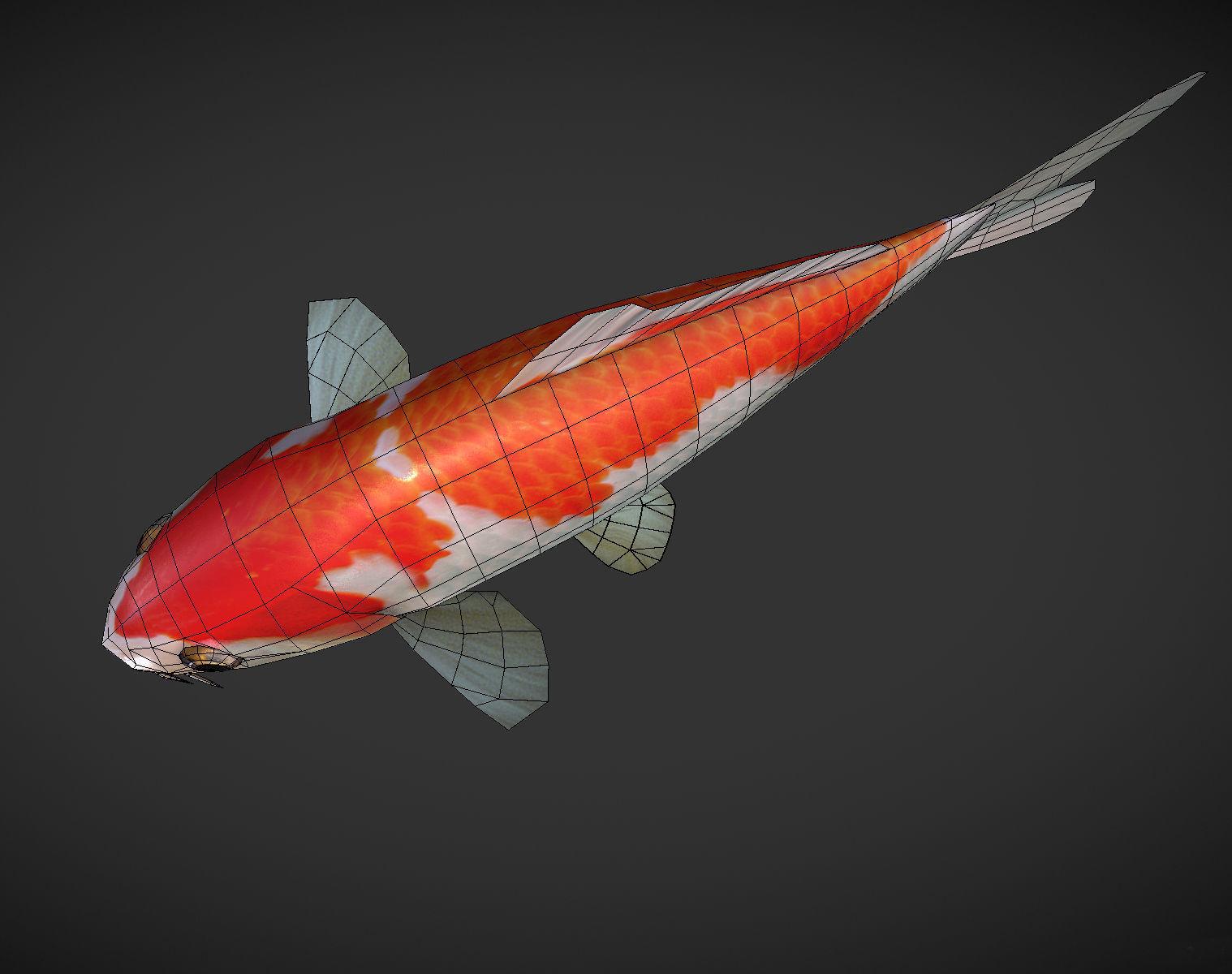 3D asset Koi fish | CGTrader