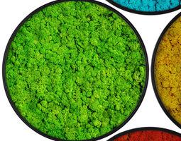 3D Stabilized moss