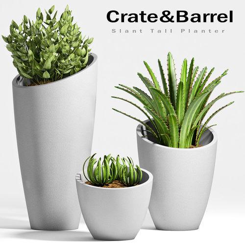 Decorative plant set-20