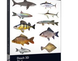 seafood Dosch 3D - Fish