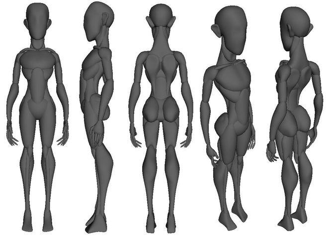 Anatomy Mannequin - Game Ready
