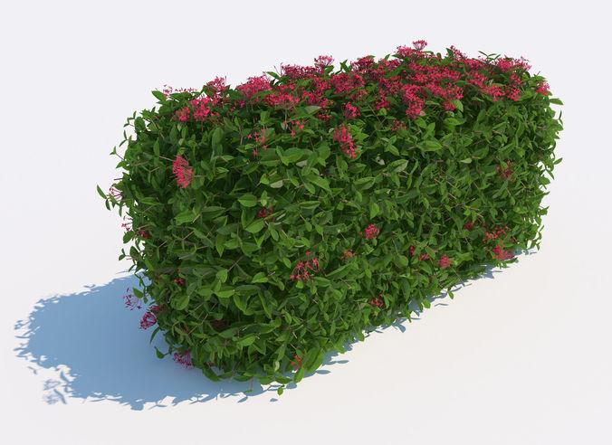 3d bush  3d model max obj mtl mat 1