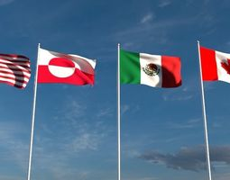 North American Flags 3D