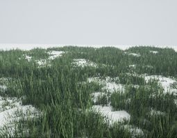 3D model Grass Green And Die