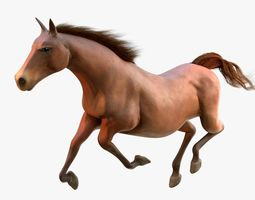 Horse Animated 3D asset low-poly