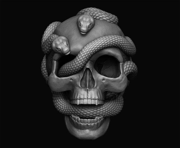 skull with snakes 3d model obj mtl stl 1