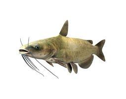 Catfish Fish 3D