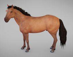 Horse 3D asset game-ready