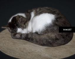 3D Sleeping Cat