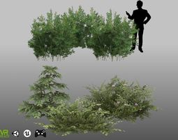 3D asset Lycium Shawii and Flower Shrubs