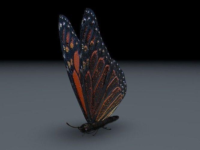 orange butterfly 3d model animated obj mtl 3ds fbx c4d dxf stl 1