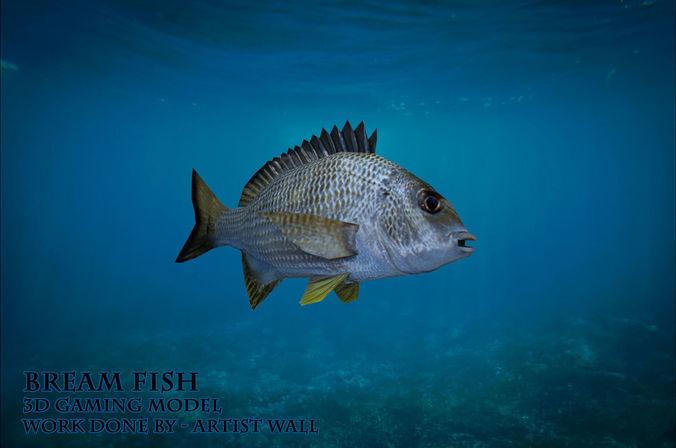 bream fish lowpoly 3d gaming model 3d model obj mtl fbx ma mb 1