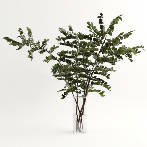 3d Model Branches In A Vase 003 Cgtrader