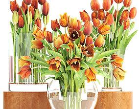 3D Bouquet of tulips set