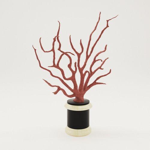 sculpture coral - 18th century 3d model max obj mtl fbx pdf 1