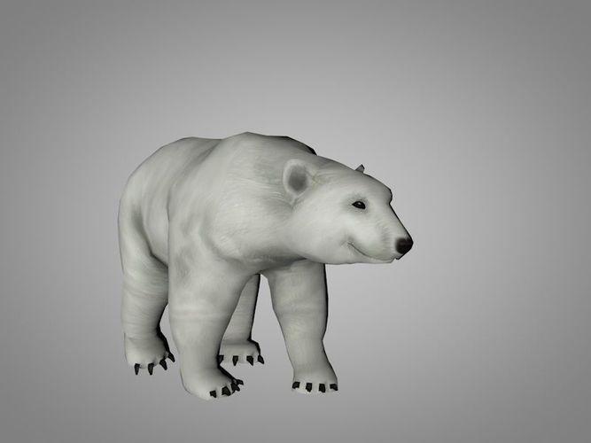polar white bear 3d model rigged animated max obj mtl 3ds fbx c4d ma mb 1