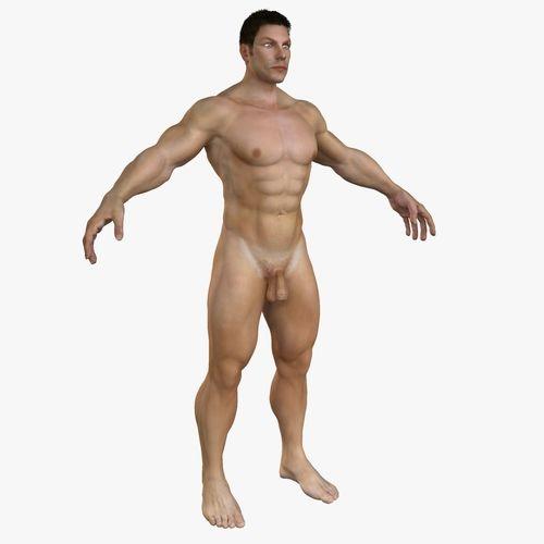 3d model human male full body anatomy cgtrader