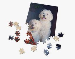 prop Custom Puzzle 3D model