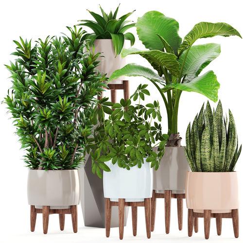 collection plants 3d model max obj mtl fbx 1