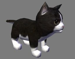 3D model animated cat with animation