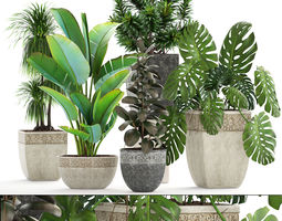 3D garden Collection plants