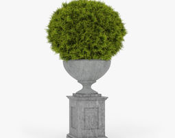 3D Thuja ball classic