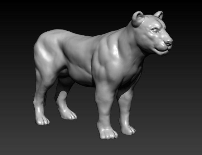 lioness 3d model stl 1