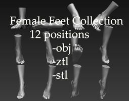 3D 12 Female Feet