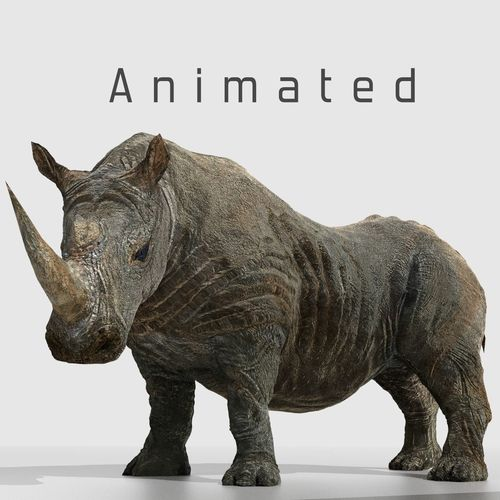 southern white african rhino 3d model low-poly rigged animated obj mtl blend 1
