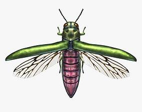 game-ready Emerald Ash Borer Beetle Wrecker 3D Model 3
